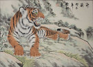 Chinese Tiger Taking a Rest