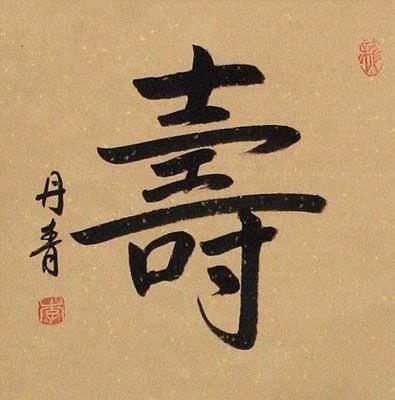 LONG LIFE / LONGEVITY Chinese Wall Scroll close up view