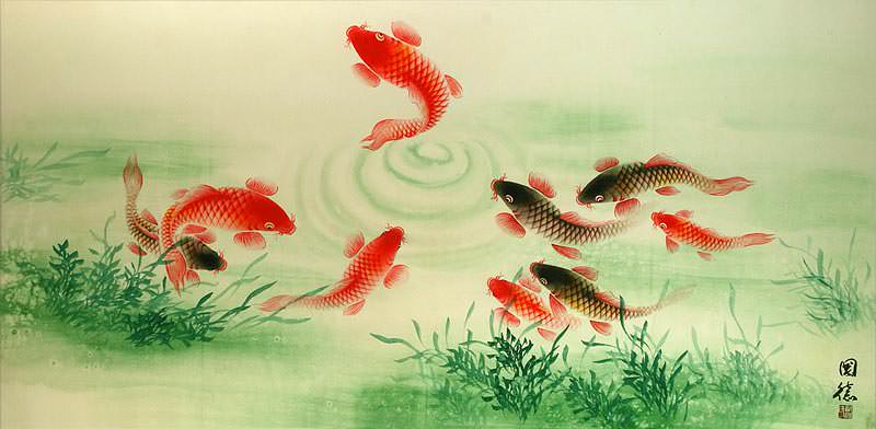 Koi Fish Feeding - Chinese Painting