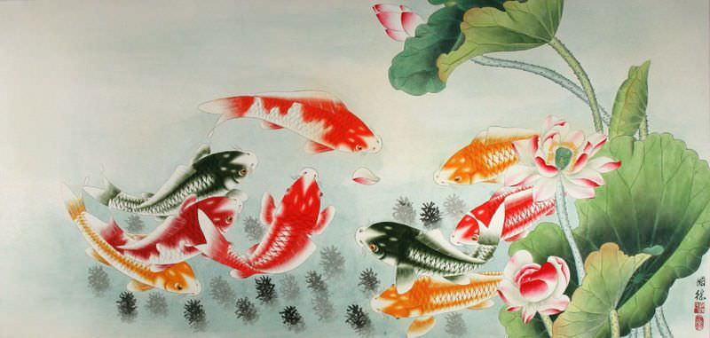 Koi Fish and Lotus Flower - Colorful Chinese Painting