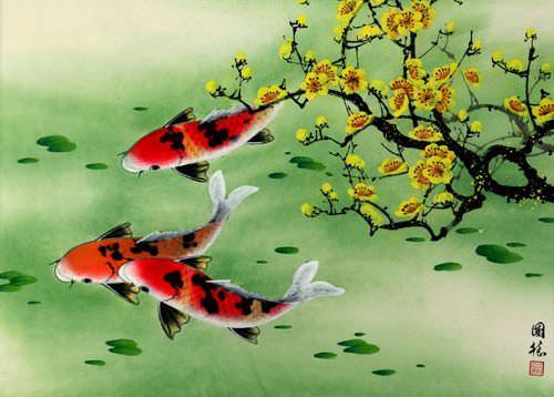 Koi Fish & Plum Blossom Chinese Painting