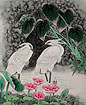 Egrets<br>Early Morning Dew Painting