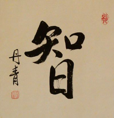 WISDOM Chinese / Japanese Kanji Wall Scroll close up view