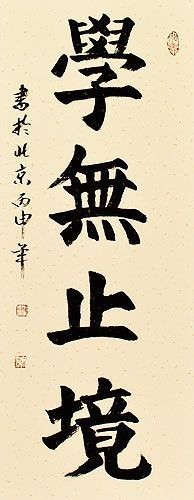 LEARNING is ETERNAL - Philosophy Proverb Wall Scroll close up view