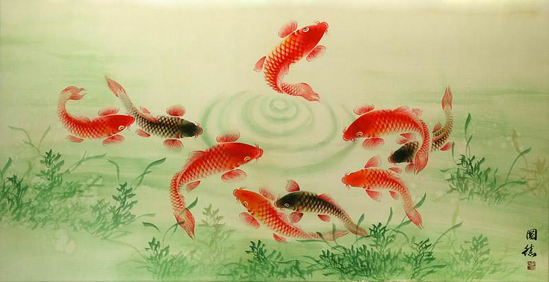 Koi Fish Feeding - Asian Painting
