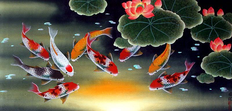 Huge Koi Fish and Lily Vivid Painting