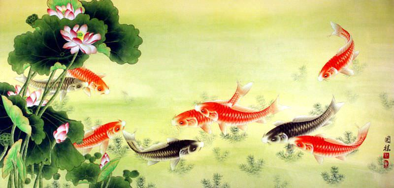 Koi Fish & Lotus Flowers Painting
